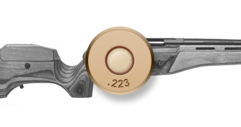 .223 Remington Hunting Rifles